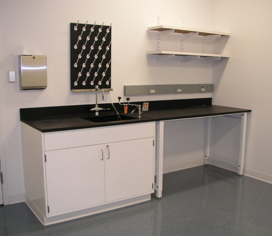 Lab Cabinet with sink